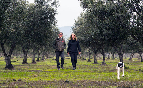 Hort Masterclass helping boutique grower verify olive investment
