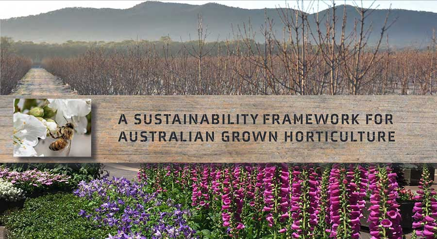 Key sustainability issues identified for Australian horticulture