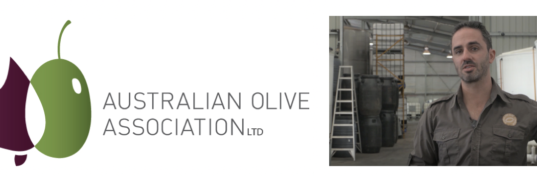 Webinar: Upscale Your Table Olives Operation