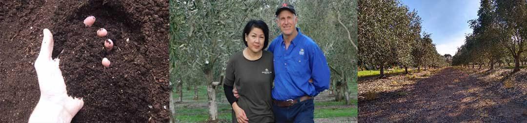 NSW Riverina AOA Healthy Soils Regional Field Day – COVID update